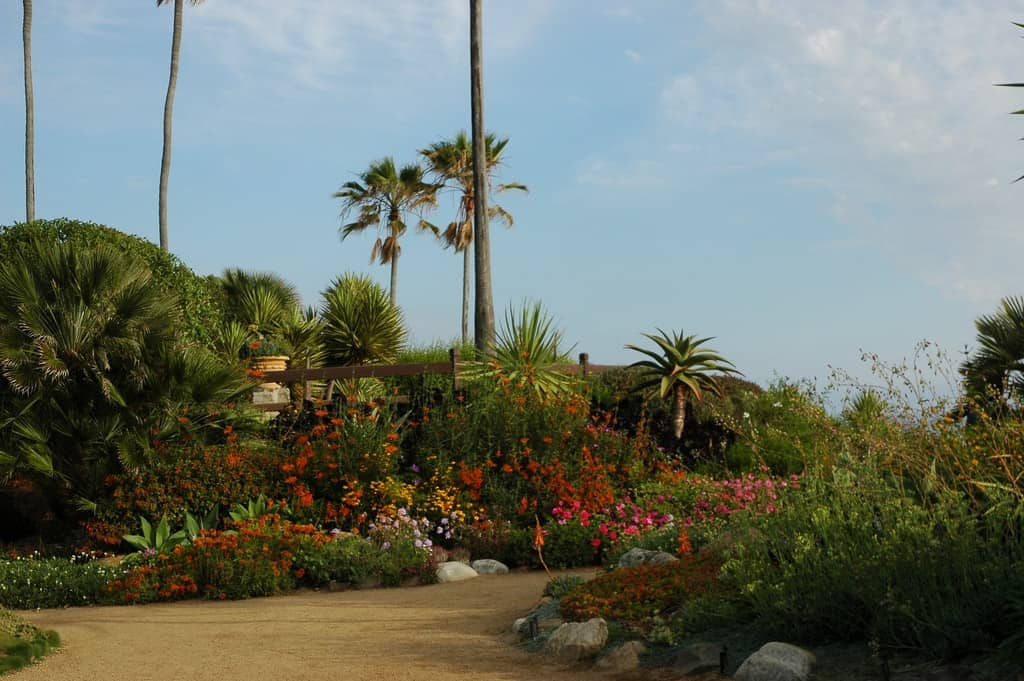 Encinitas Landscaping