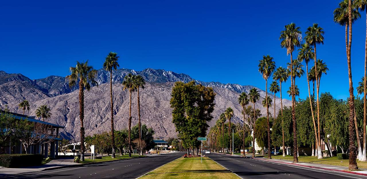 palm springs landscaping