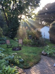 low maintenance backyard landscaping ideas