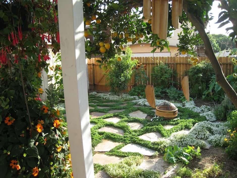 landscaping expert tips